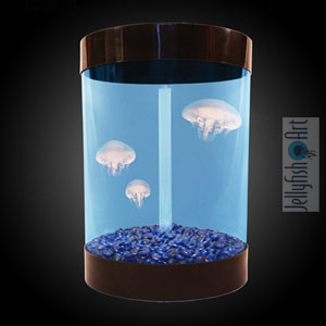 Jellyfish Art, las medusas son tus mascotas