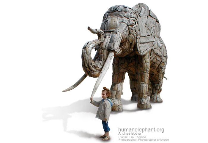 elephant :: andries botha