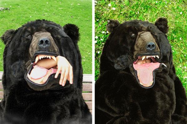 Devorada por un oso