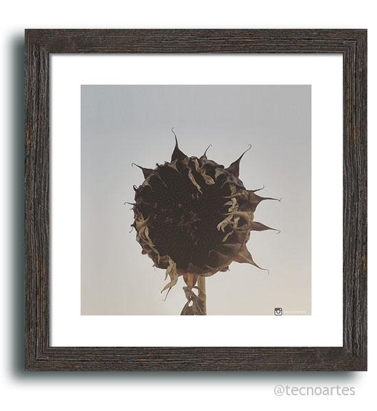 frameprint_03_36x36