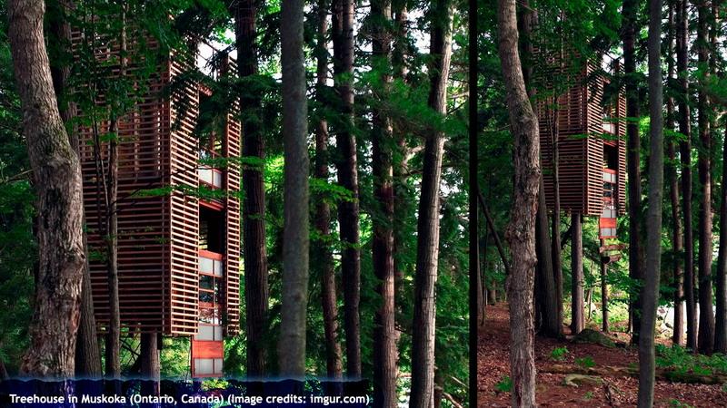 Treehouse in Muskoka (Ontario, Canada)