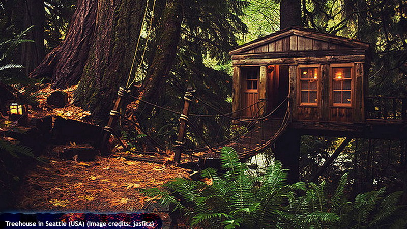 Treehouse in Seattle (USA)