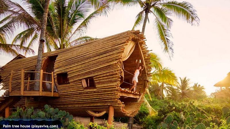 treehouses_20b